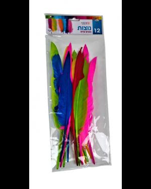 נוצות צבעוניות 12 יח
